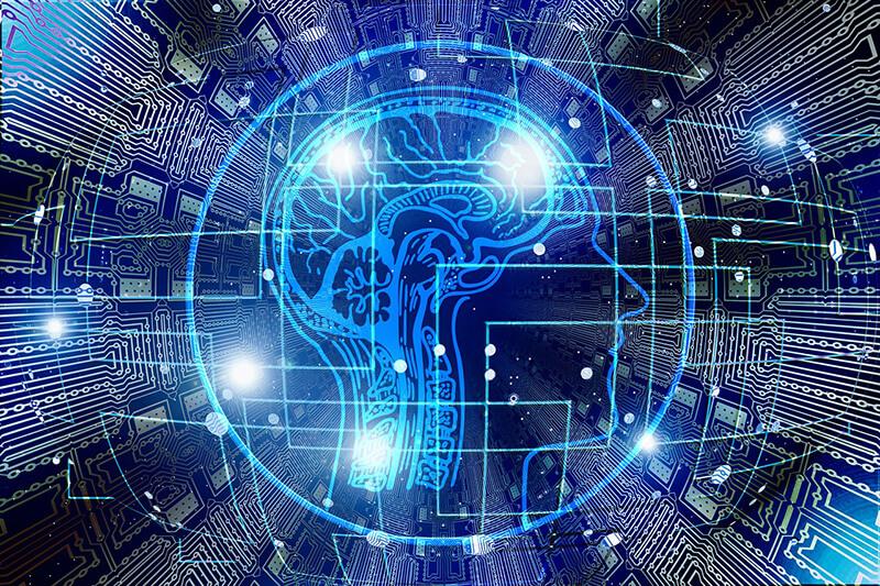 brain and data illustration