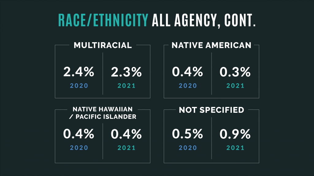 Graphic reads Race/Ethnicity All Agency, continued